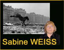 Weisssabine